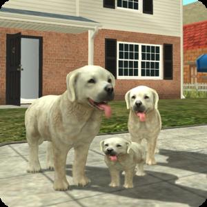 Turbo Rocket Games - the most innovative animal simulation